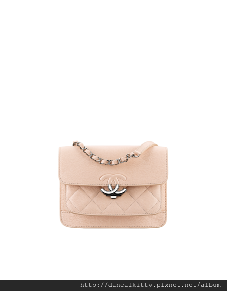 small_2_55_flap_bag-sheet_png_fashionImg_low-.png
