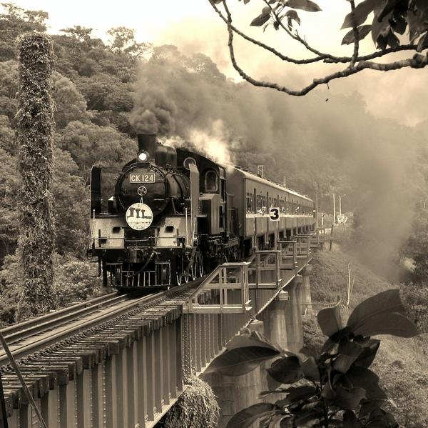 勝興蒸氣火車 151+3.jpg