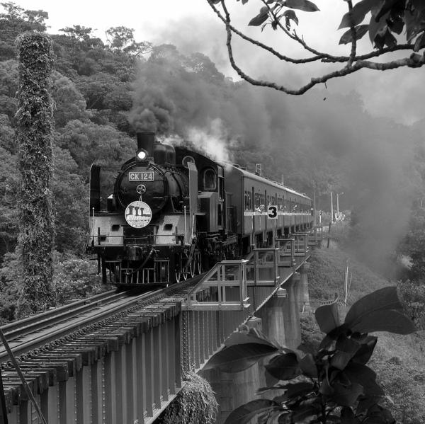 勝興蒸氣火車 151+2.jpg