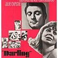 1965 Darling.jpg