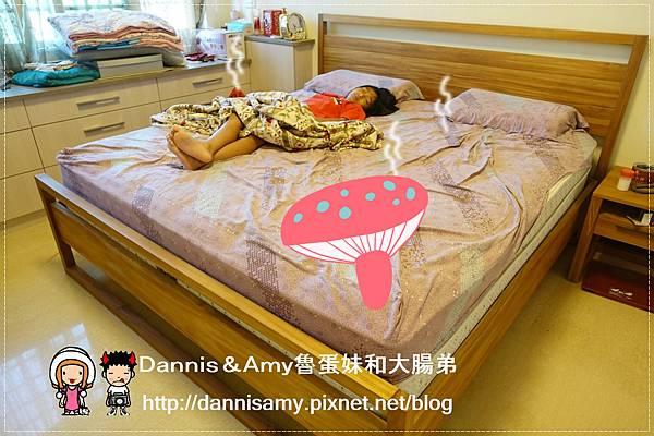 ♥HOLA居家寢具♥▋HOLA台灣碳化桂竹雙人加大蓆▋天然材質涼蓆 身體降溫蓋天然 省電省錢晚上更好眠