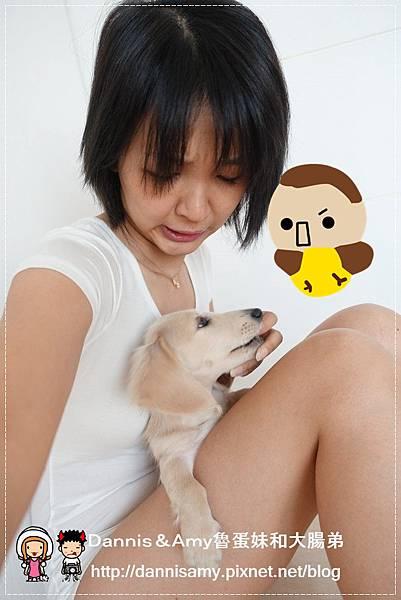 DSC01984_副本