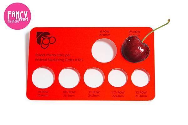 販奇網 Rose美國玫瑰紅櫻桃 (3)