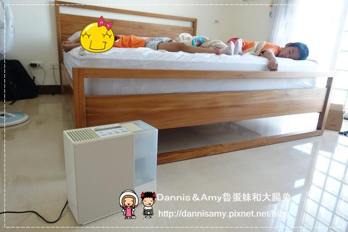 大日DAINICHI 空氣清淨保濕機 (23)