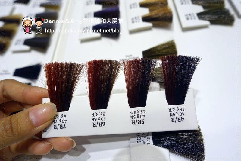 精萃Hair design 竹北造型設計 (17)