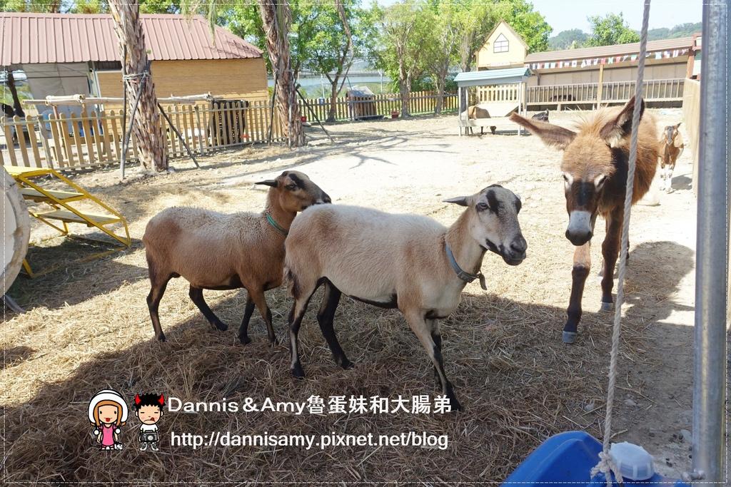 小牛仔休閒農場 (31).jpg