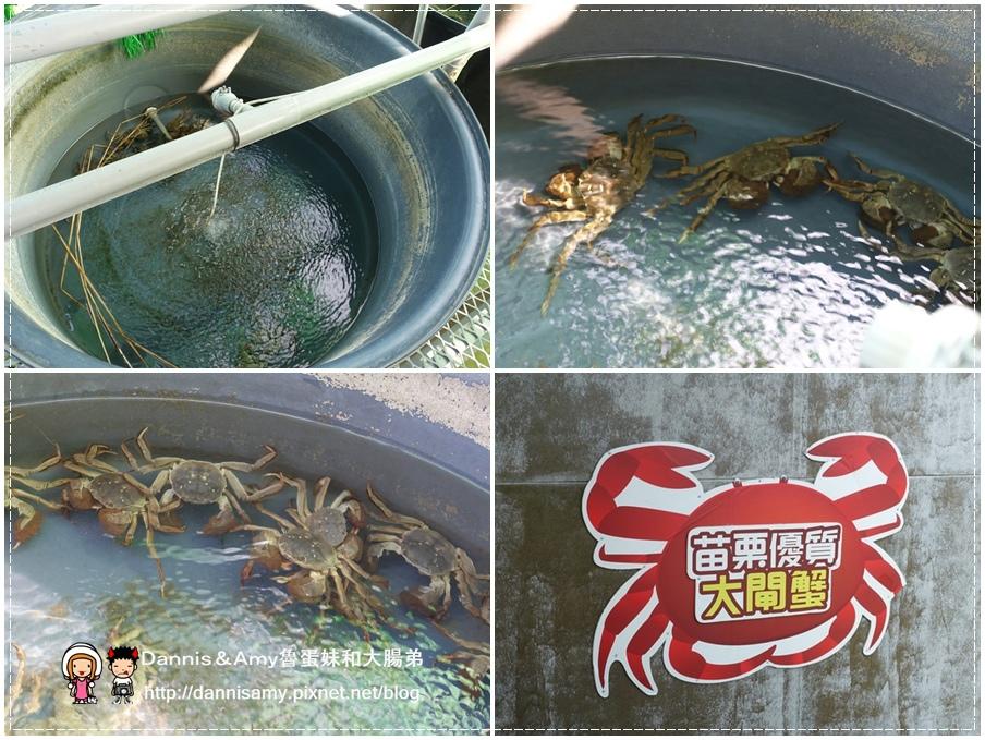 紅心大閘蟹 泰國蝦 生態養殖觀光農場 (2).jpg