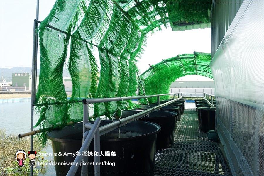 紅心大閘蟹 泰國蝦 生態養殖觀光農場 (15).jpg