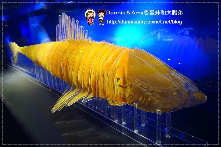 深海巨怪特展 (9).jpg