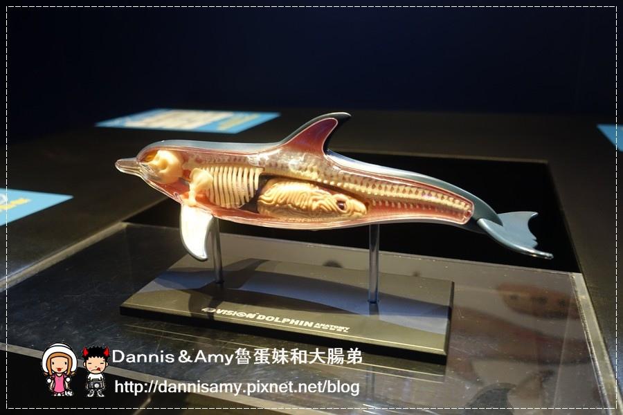 深海巨怪特展 (34).jpg