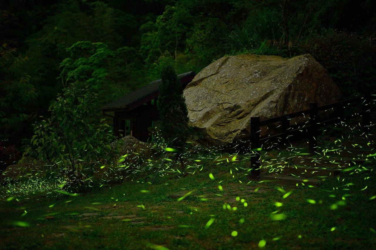 圓潭自然生態公園
