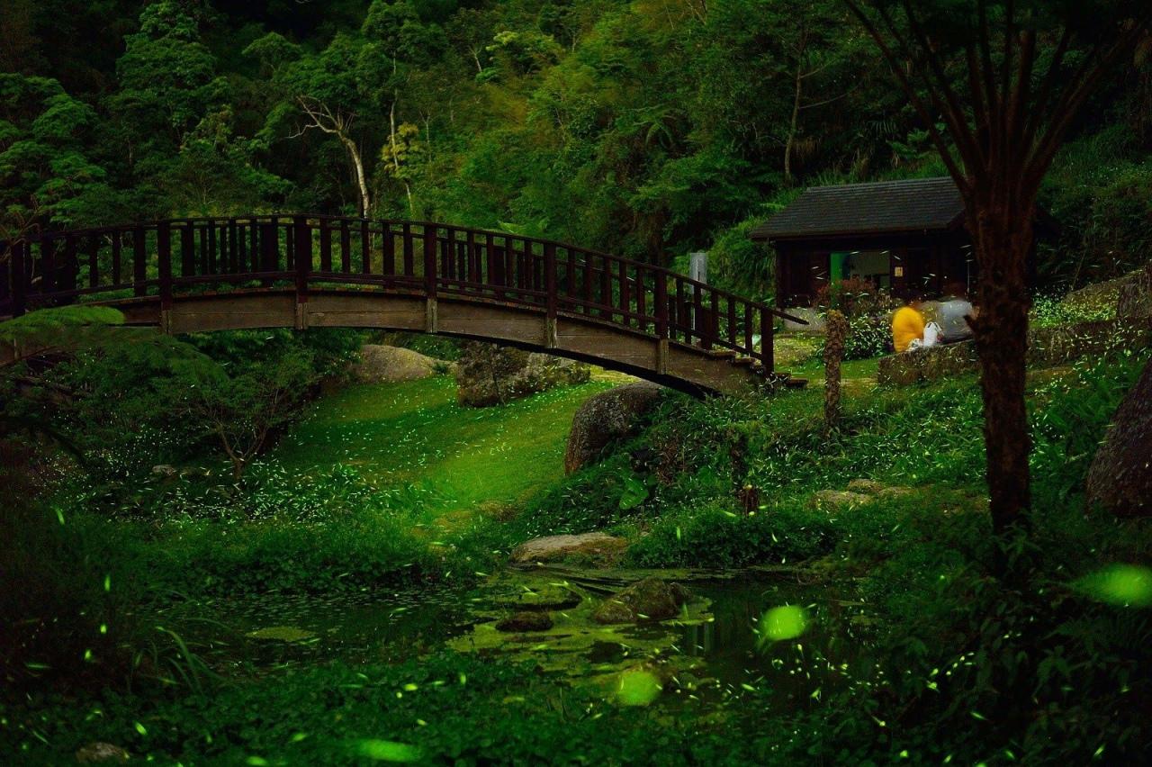 圓潭自然生態公園2