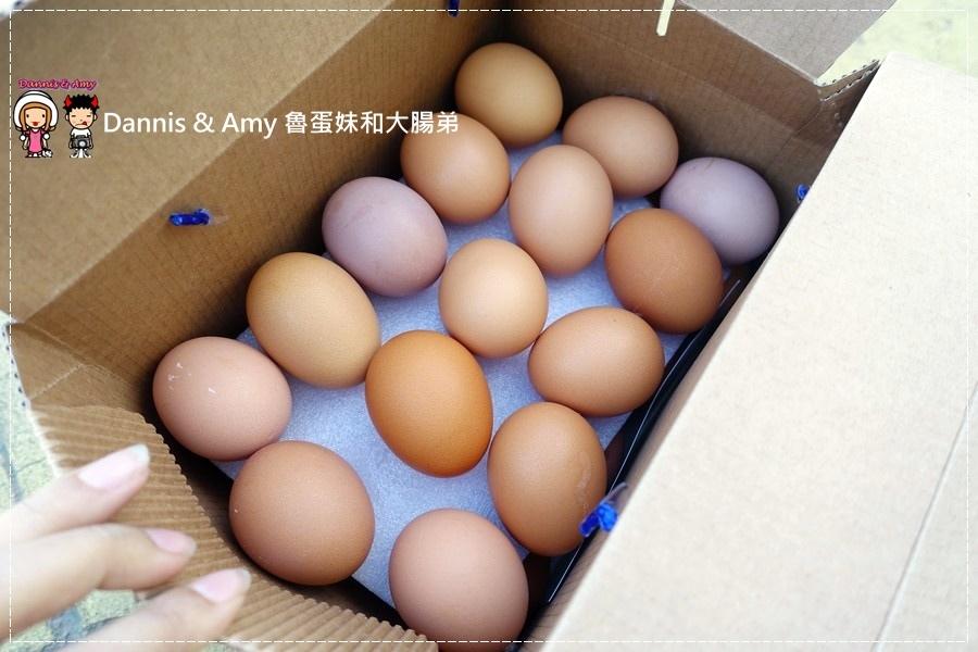 20170103《雞蛋食譜》如何料理小朋友愛吃的蛋料理 x 苗栗快樂雞的YOYO蛋︱(影片) (38).jpg