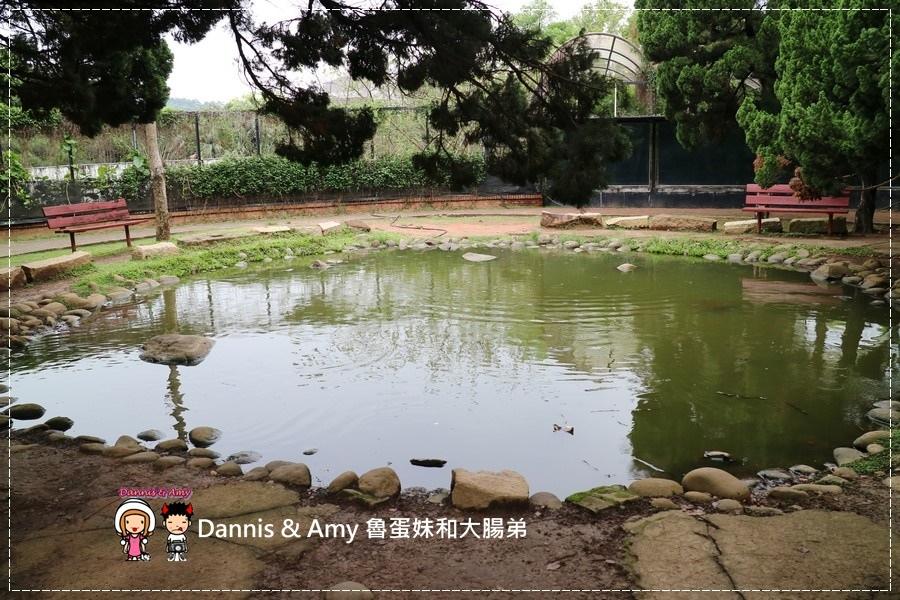 20170422《新竹景點》令新竹人驕傲的新竹市立動物園即將「請假」啦!。期待「新」動物園的模樣|(影片) (48).jpg