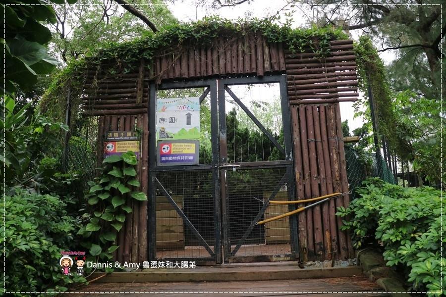 20170422《新竹景點》令新竹人驕傲的新竹市立動物園即將「請假」啦!。期待「新」動物園的模樣|(影片) (47).jpg