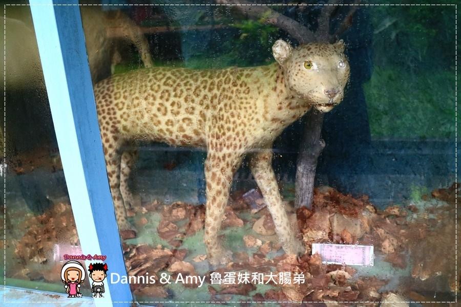 20170422《新竹景點》令新竹人驕傲的新竹市立動物園即將「請假」啦!。期待「新」動物園的模樣|(影片) (39).jpg