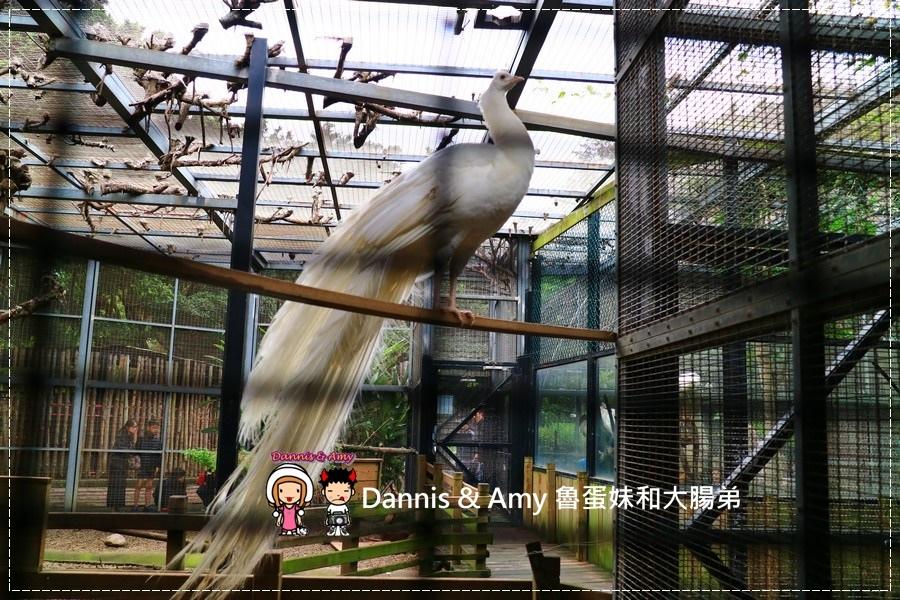 20170422《新竹景點》令新竹人驕傲的新竹市立動物園即將「請假」啦!。期待「新」動物園的模樣|(影片) (37).jpg