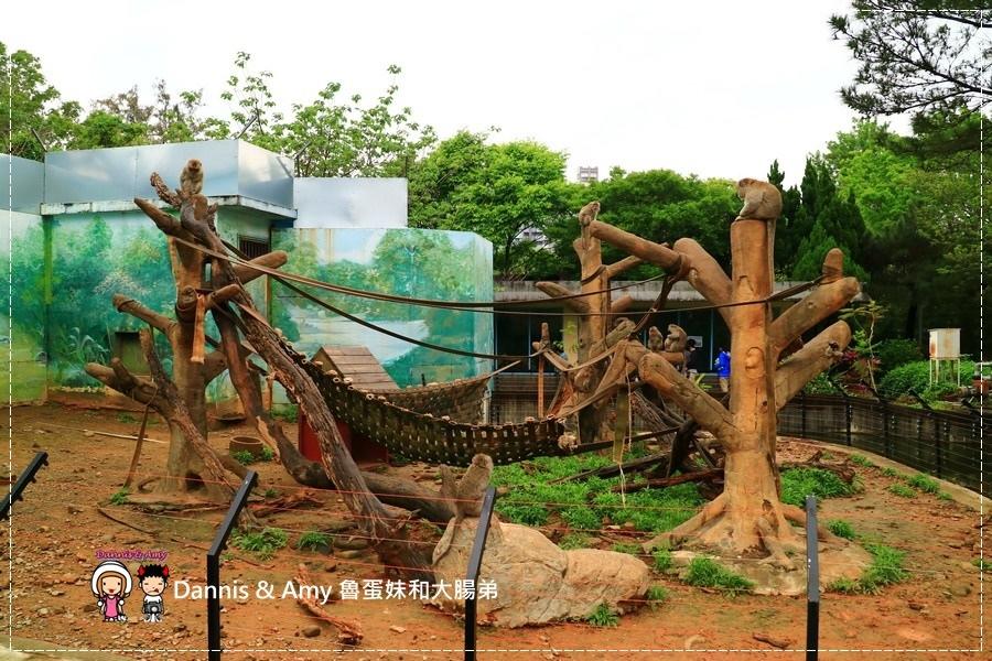 20170422《新竹景點》令新竹人驕傲的新竹市立動物園即將「請假」啦!。期待「新」動物園的模樣|(影片) (32).jpg