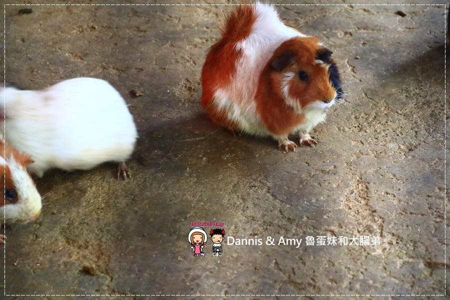 20170422《新竹景點》令新竹人驕傲的新竹市立動物園即將「請假」啦!。期待「新」動物園的模樣|(影片) (30).jpg