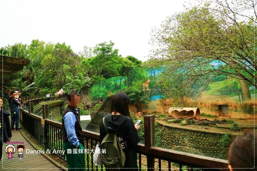 20170422《新竹景點》令新竹人驕傲的新竹市立動物園即將「請假」啦!。期待「新」動物園的模樣|(影片) (21).jpg