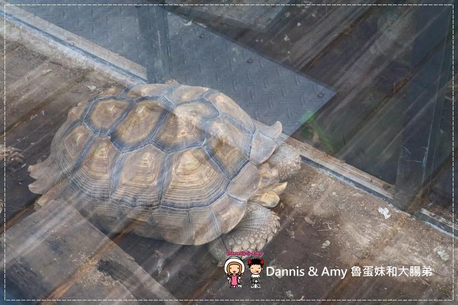 20170422《新竹景點》令新竹人驕傲的新竹市立動物園即將「請假」啦!。期待「新」動物園的模樣|(影片) (20).jpg