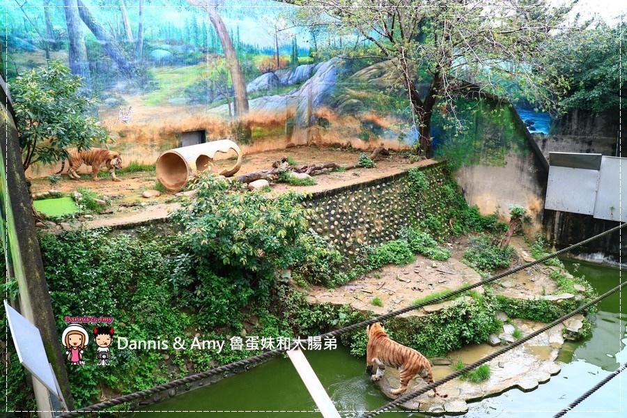 20170422《新竹景點》令新竹人驕傲的新竹市立動物園即將「請假」啦!。期待「新」動物園的模樣|(影片) (16).jpg