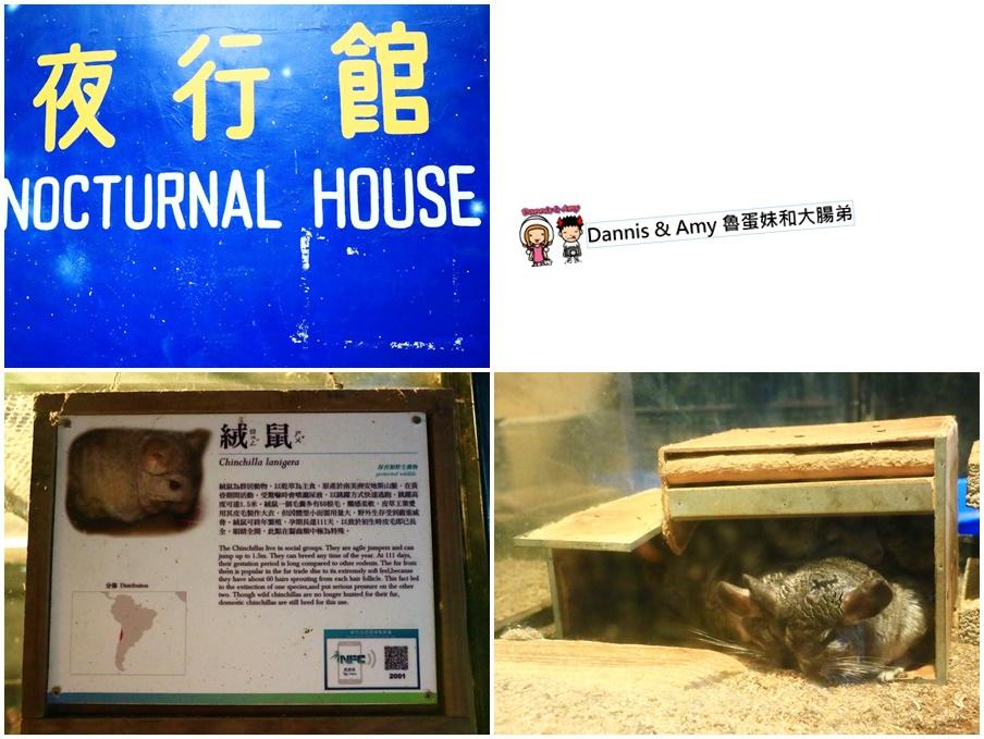 20170422《新竹景點》令新竹人驕傲的新竹市立動物園即將「請假」啦!。期待「新」動物園的模樣|(影片) (7).jpg