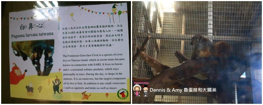 20170422《新竹景點》令新竹人驕傲的新竹市立動物園即將「請假」啦!。期待「新」動物園的模樣|(影片) (6).jpg