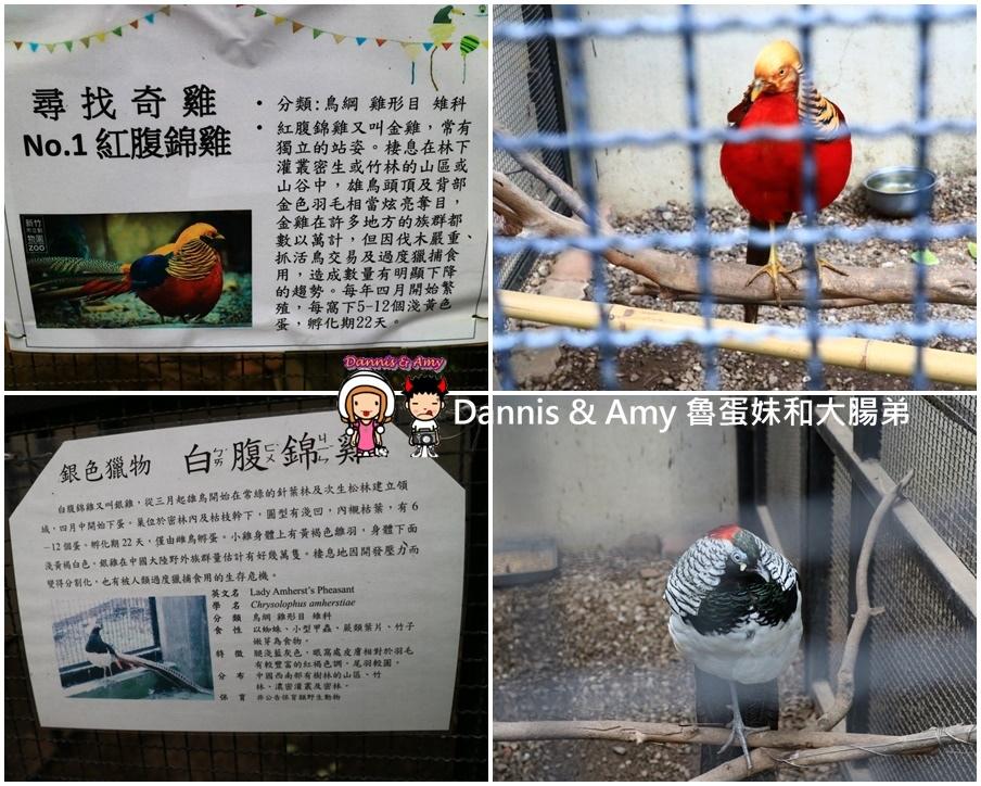 20170422《新竹景點》令新竹人驕傲的新竹市立動物園即將「請假」啦!。期待「新」動物園的模樣|(影片) (5).jpg