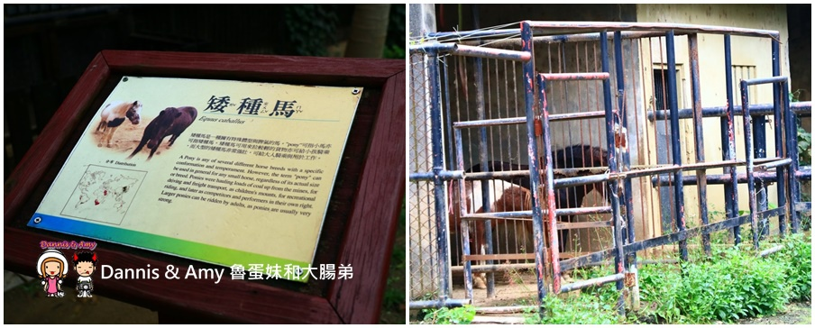 20170422《新竹景點》令新竹人驕傲的新竹市立動物園即將「請假」啦!。期待「新」動物園的模樣|(影片) (4).jpg