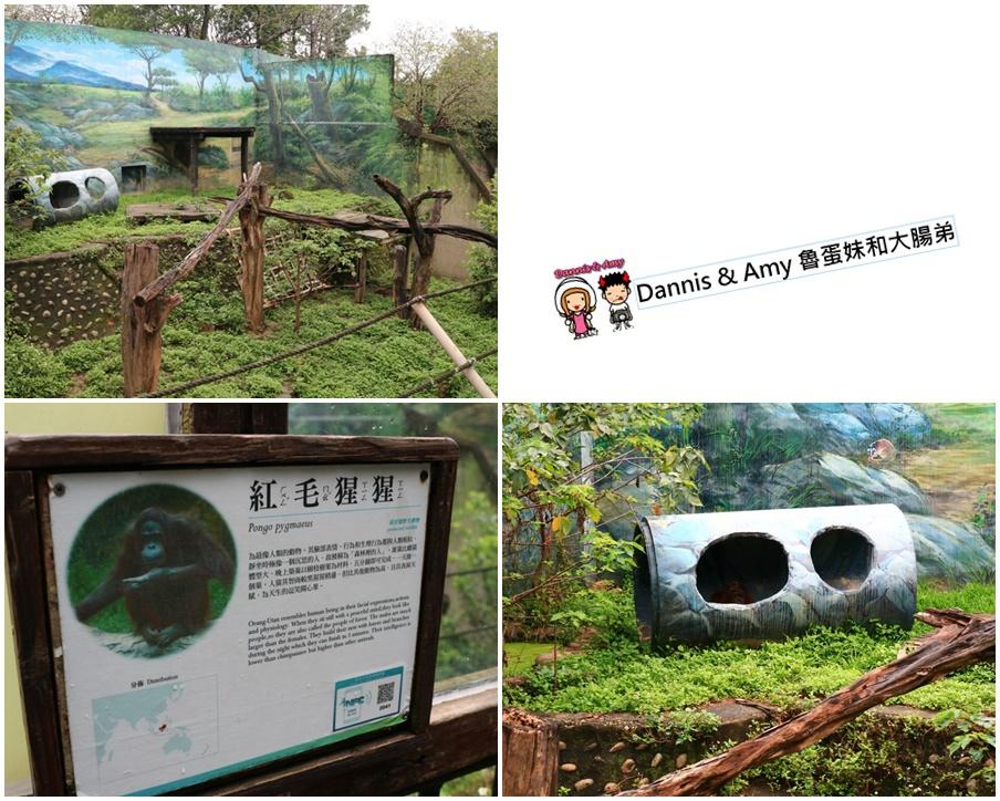 20170422《新竹景點》令新竹人驕傲的新竹市立動物園即將「請假」啦!。期待「新」動物園的模樣|(影片) (2).jpg