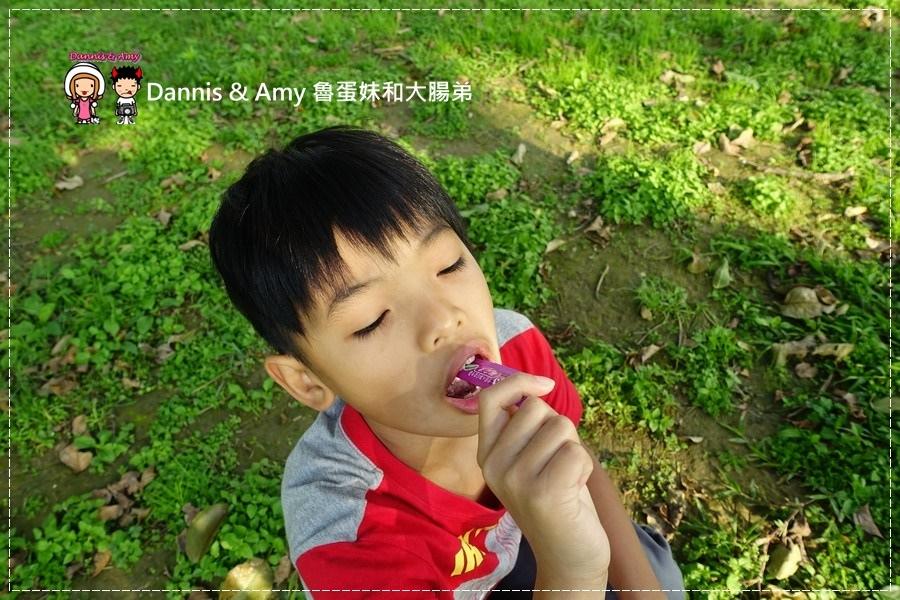 20170501《保養》YohoPower悠活原力-第三代LP28敏立清益生菌。大人小孩都愛吃的益生菌|(影片) (10).jpg