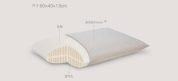 居家市集LIVING-HUB枕頭 (2).png