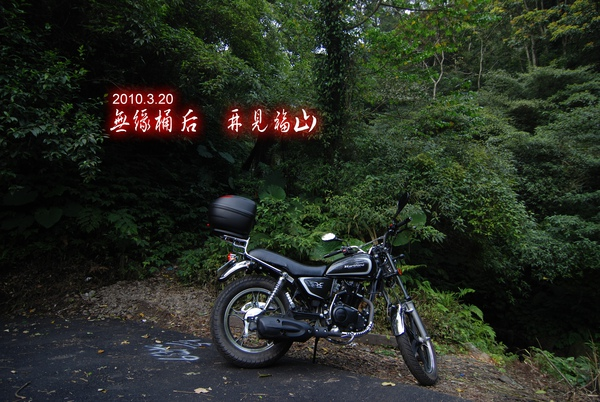 DSC_00541.jpg