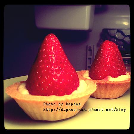 草莓乳酪塔2.png