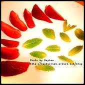 莓果草本冰塊2.PNG