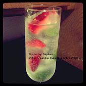 莓果草本冰塊5.PNG