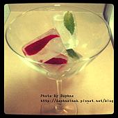 莓果草本冰塊7.PNG