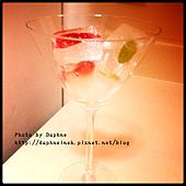 莓果草本冰塊8.PNG