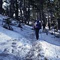 黑森林開始有積雪
