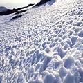 雪地也變得更有型了