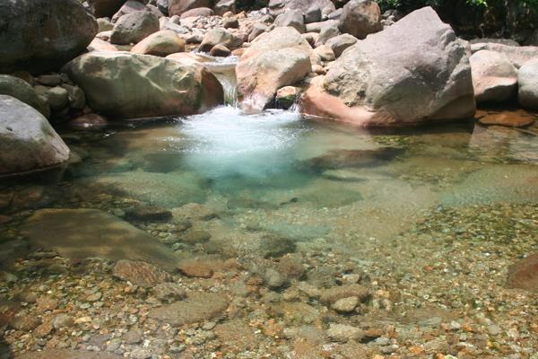 看似與往年一樣清澈,實際水質則已部潔淨了~
