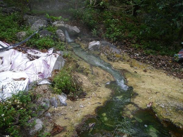 寶來溪溯登小關山2009-03-14 12-53-25_0031.JPG