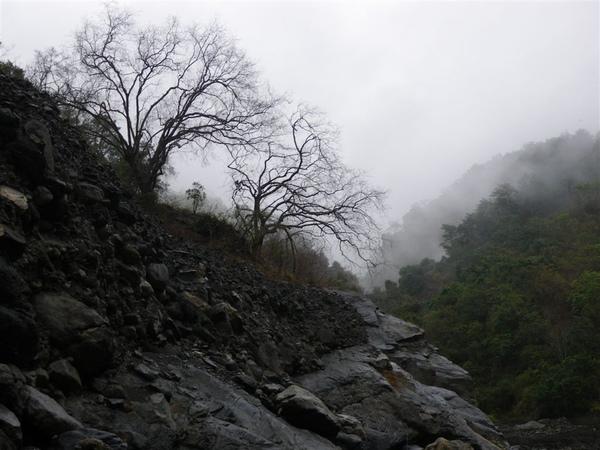 寶來溪溯登小關山2009-03-14 15-58-12_0083.JPG