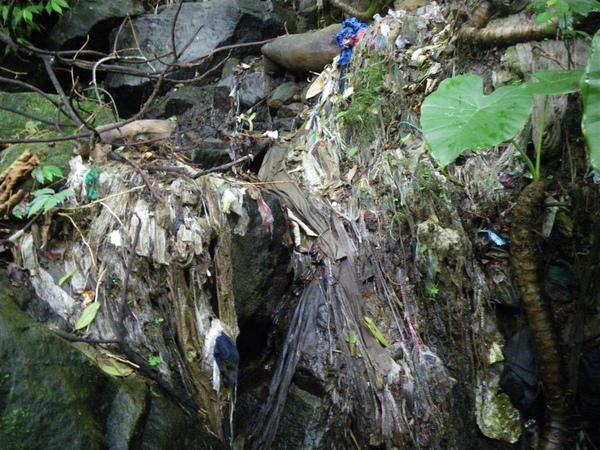 上磺溪淨溪(3)_2009-04-11 13-26-44_0092.JPG