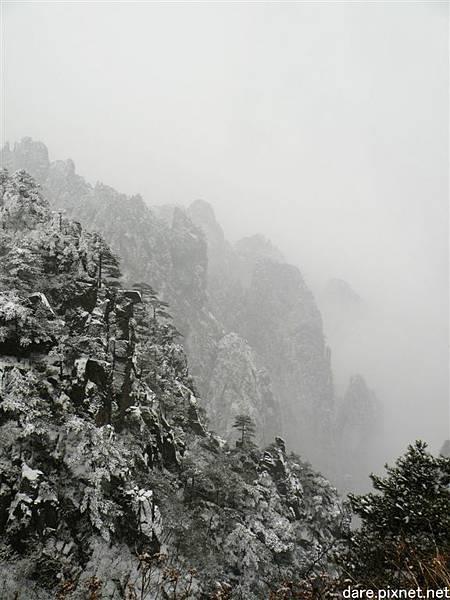 DSCN8464.jpg