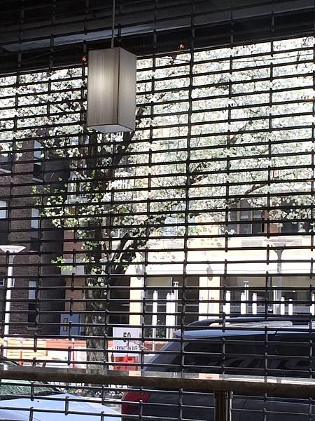 4/19@Gramercy Area