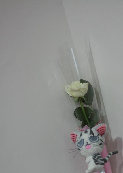 2010。七夕白玫瑰