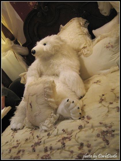 躺在可愛床上的可愛北極熊