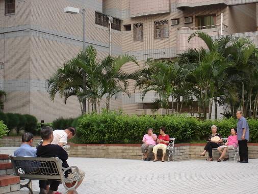 中庭四散放置的椅子